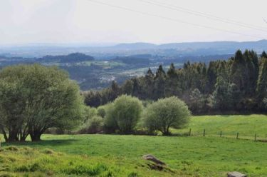 paisaxe_rural