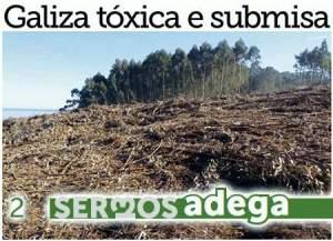 Galiza-toxica