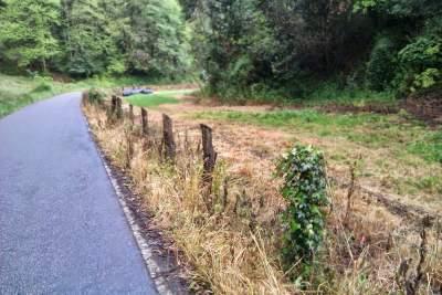 Herbicida carretera-762027
