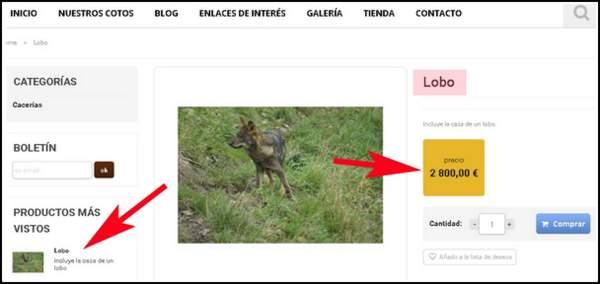 Anuncio-lobo2