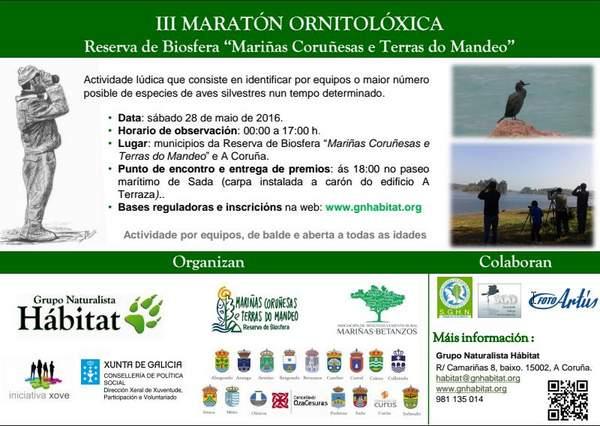 maratonrb2016