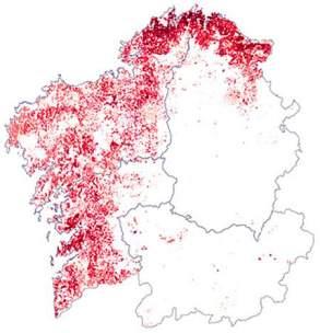 mapa-eucaliptus-08