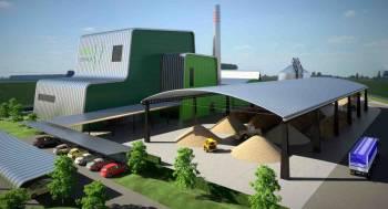 planta-biomasa-info